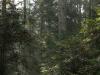 Rezerwat Błogie